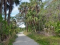 path across the hammock island to the beach