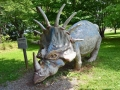 ~Styracosaurus~