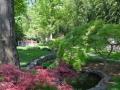 ~the garden of Asian influences~