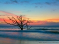 Botany Bay - Edisto Island, South Carolina