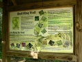 ~information board at the entrance to the trail (click on image to view larger)~