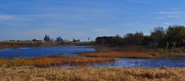~Paradise Creek Nature Park created by The Elizabeth River Project~